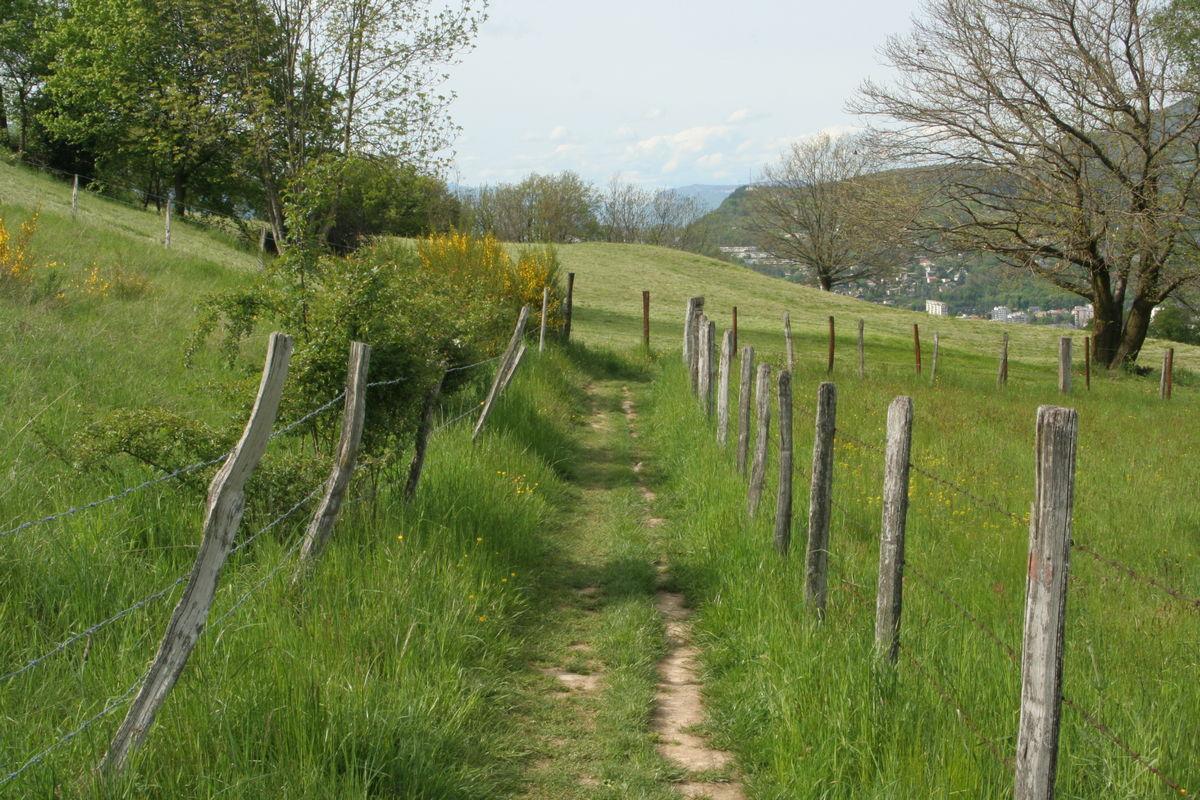 Chemin rural sur les hauts de la commune